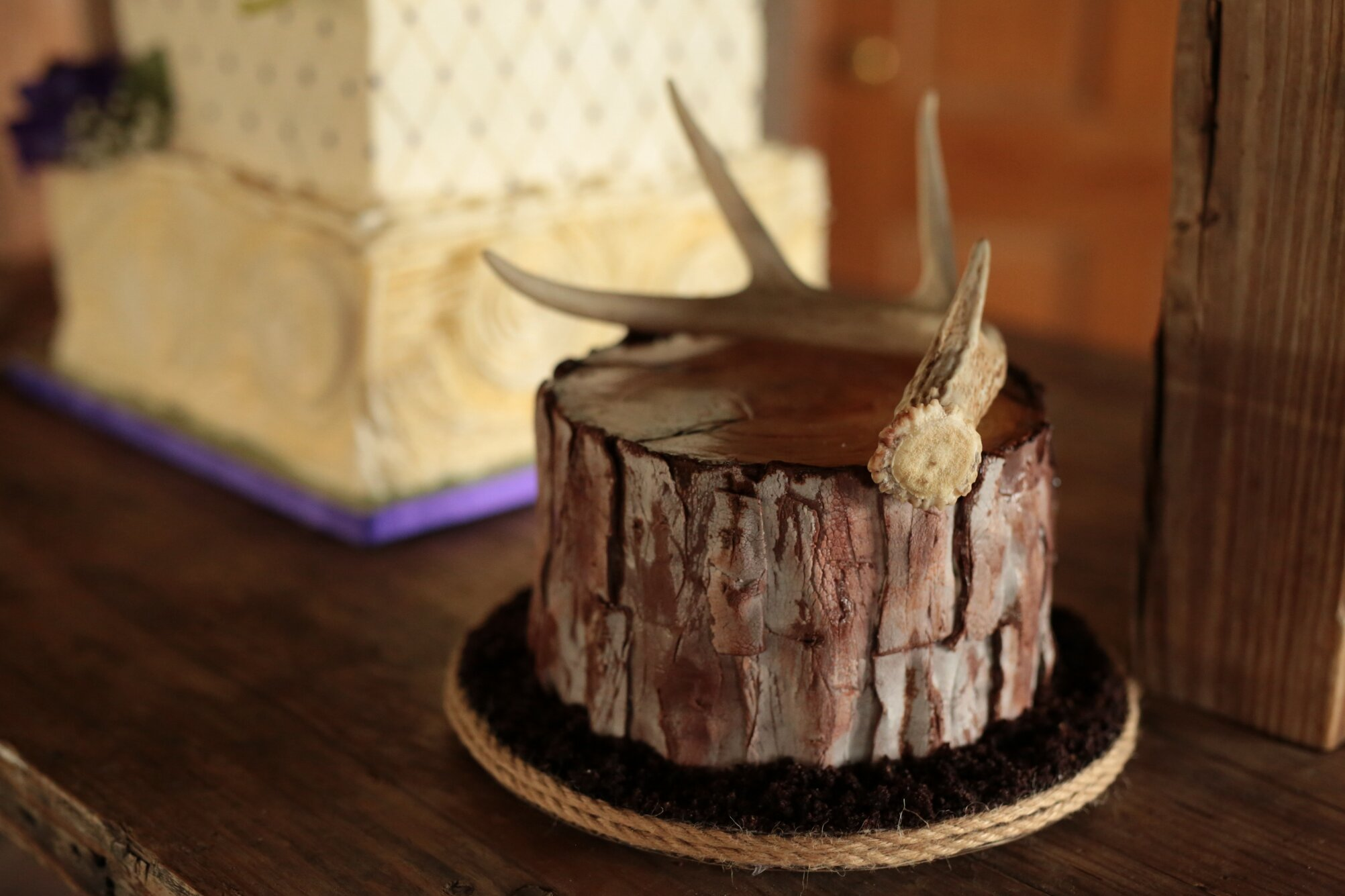 Rustic Tree Cake