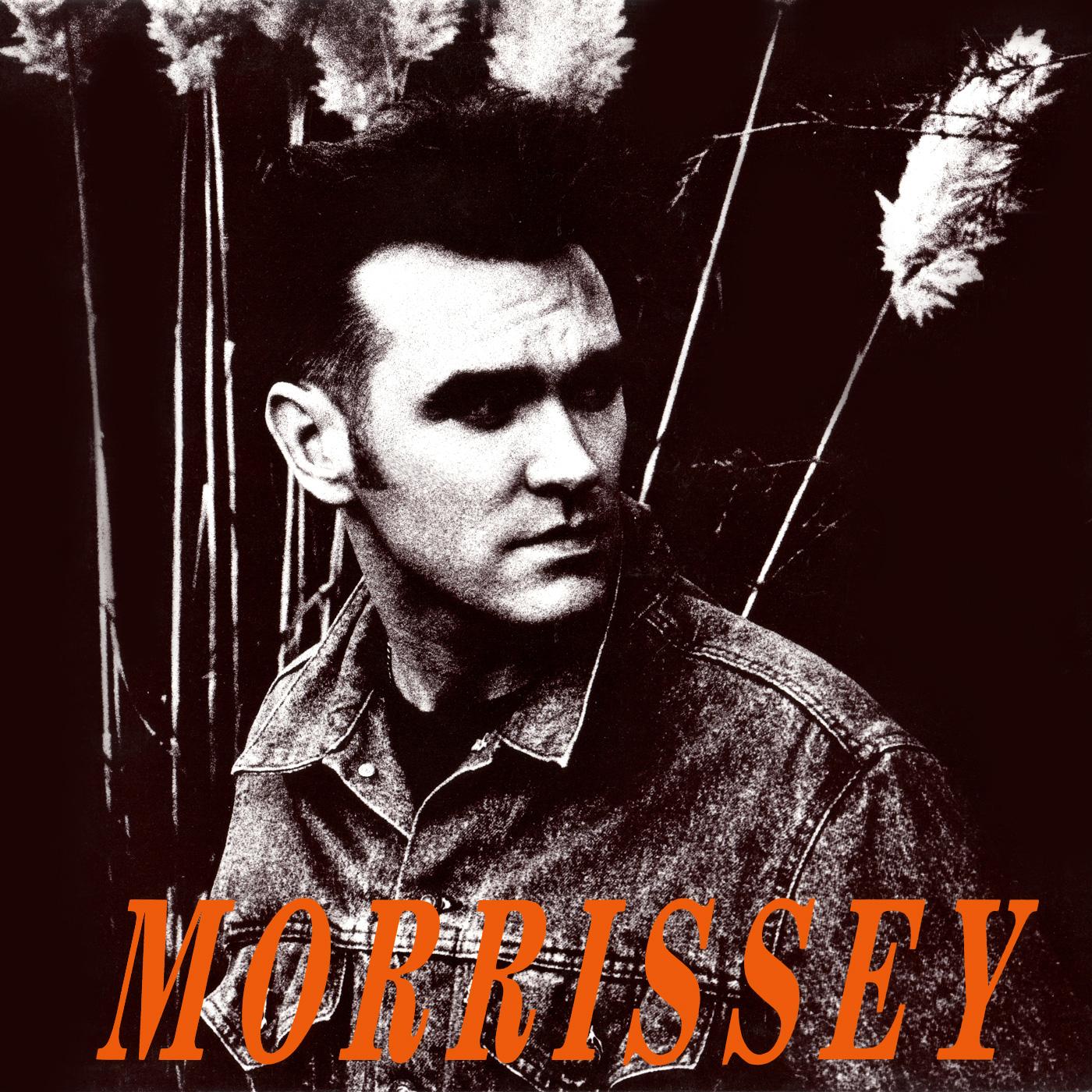 1990 - November Spawned A Monster