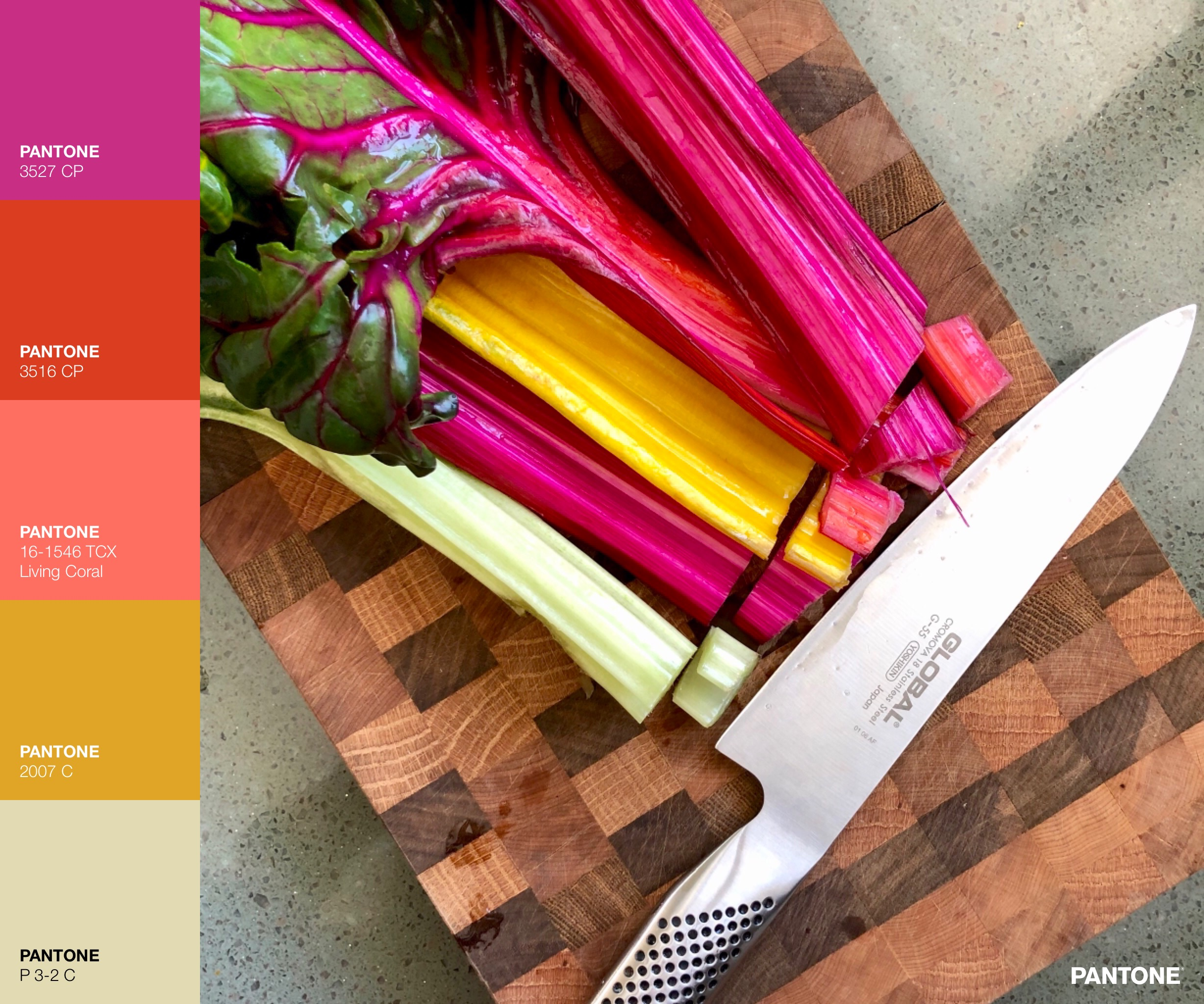 2019 Passion Project - Creating color palettes on purpose, with purpose.@palettesonpurpose