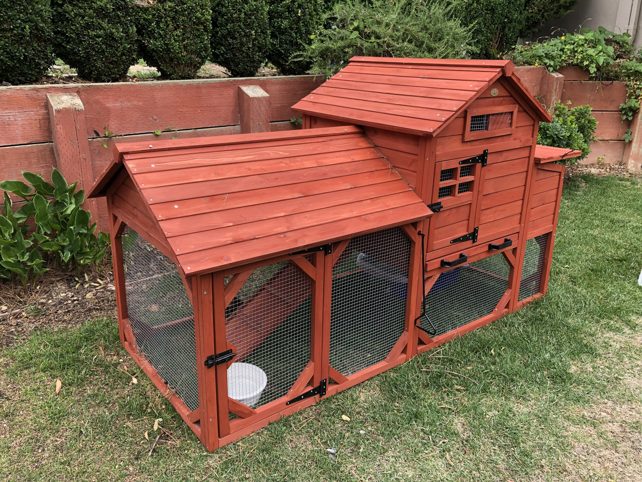 Chicken coops make good places for imprinting and also as a long-term shelter for cats.