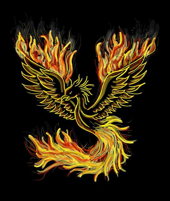 phoenix-1440452_640.jpg