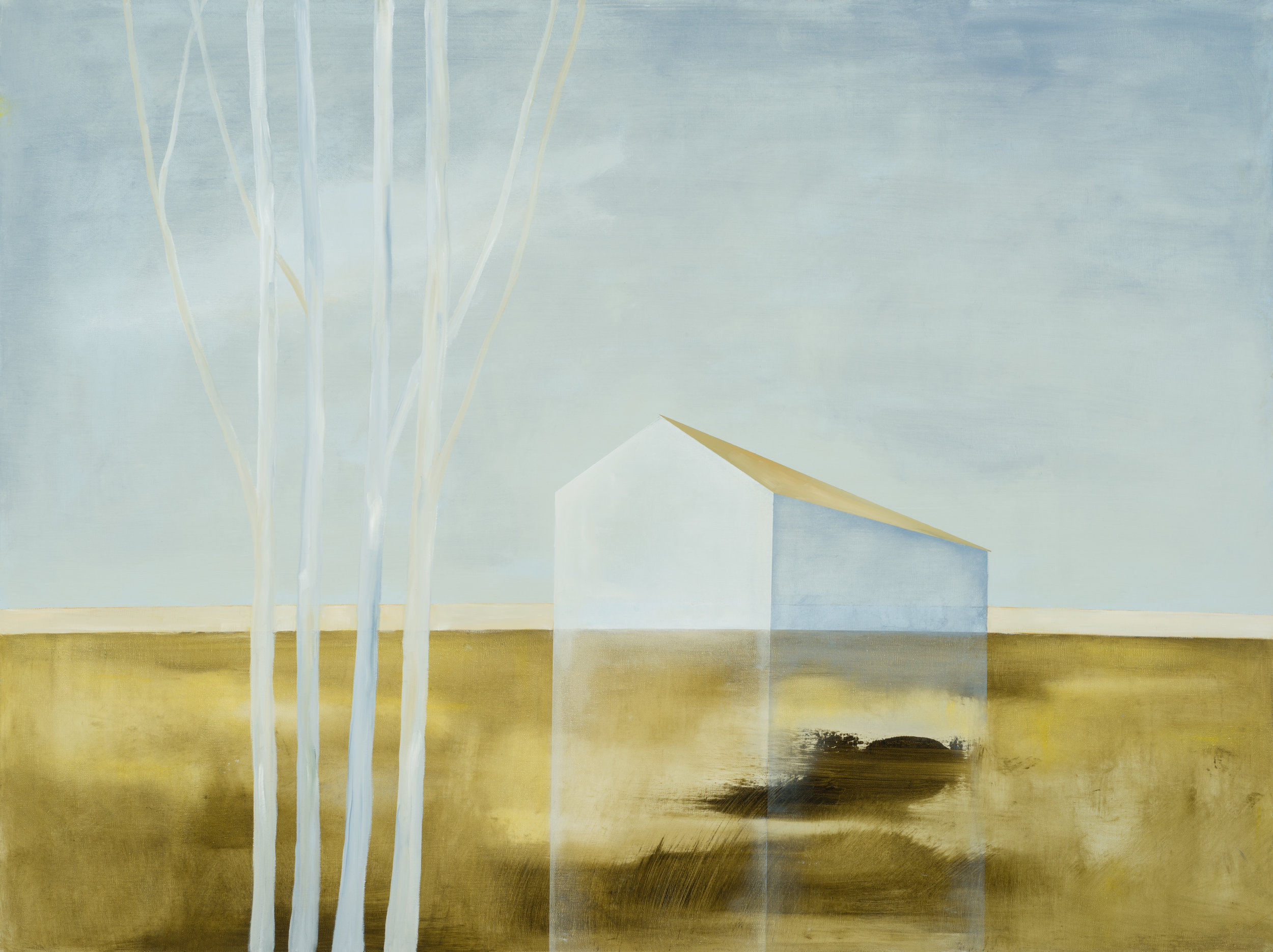 "36"" x 48""    Oil on canvas"