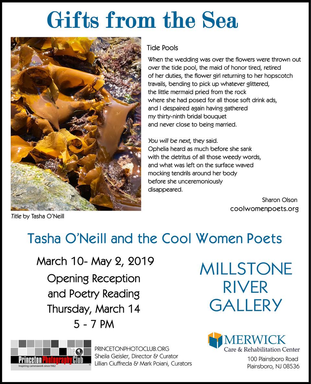 Millstone March 2019 Poster-TidePools1.jpeg