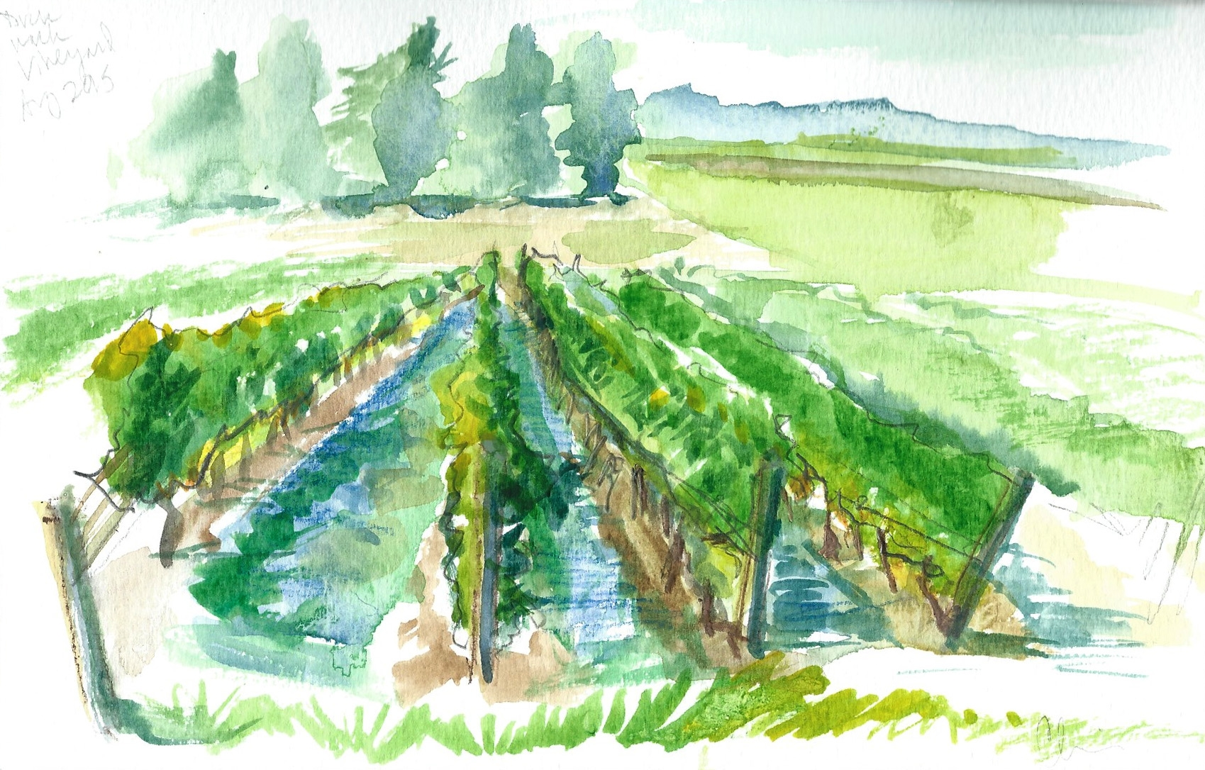 Duck Walk Vineyards