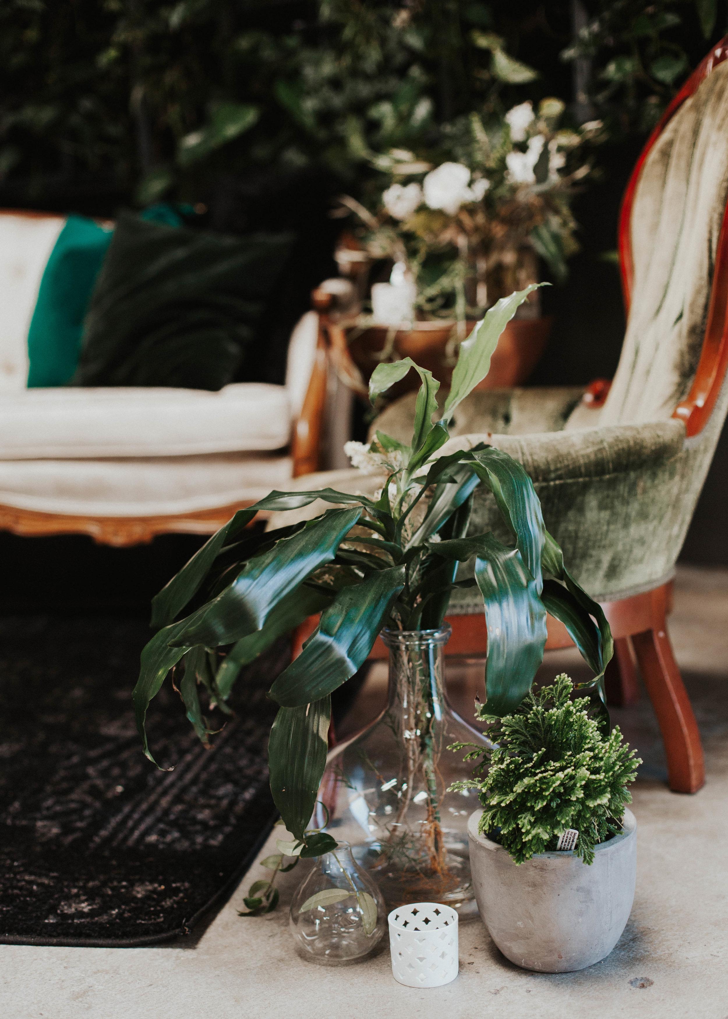 sustainable botanical wedding