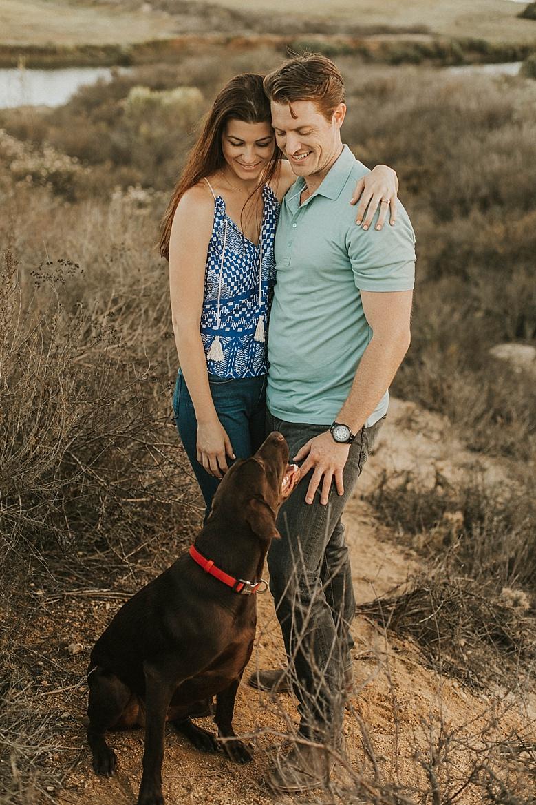 dog engagement
