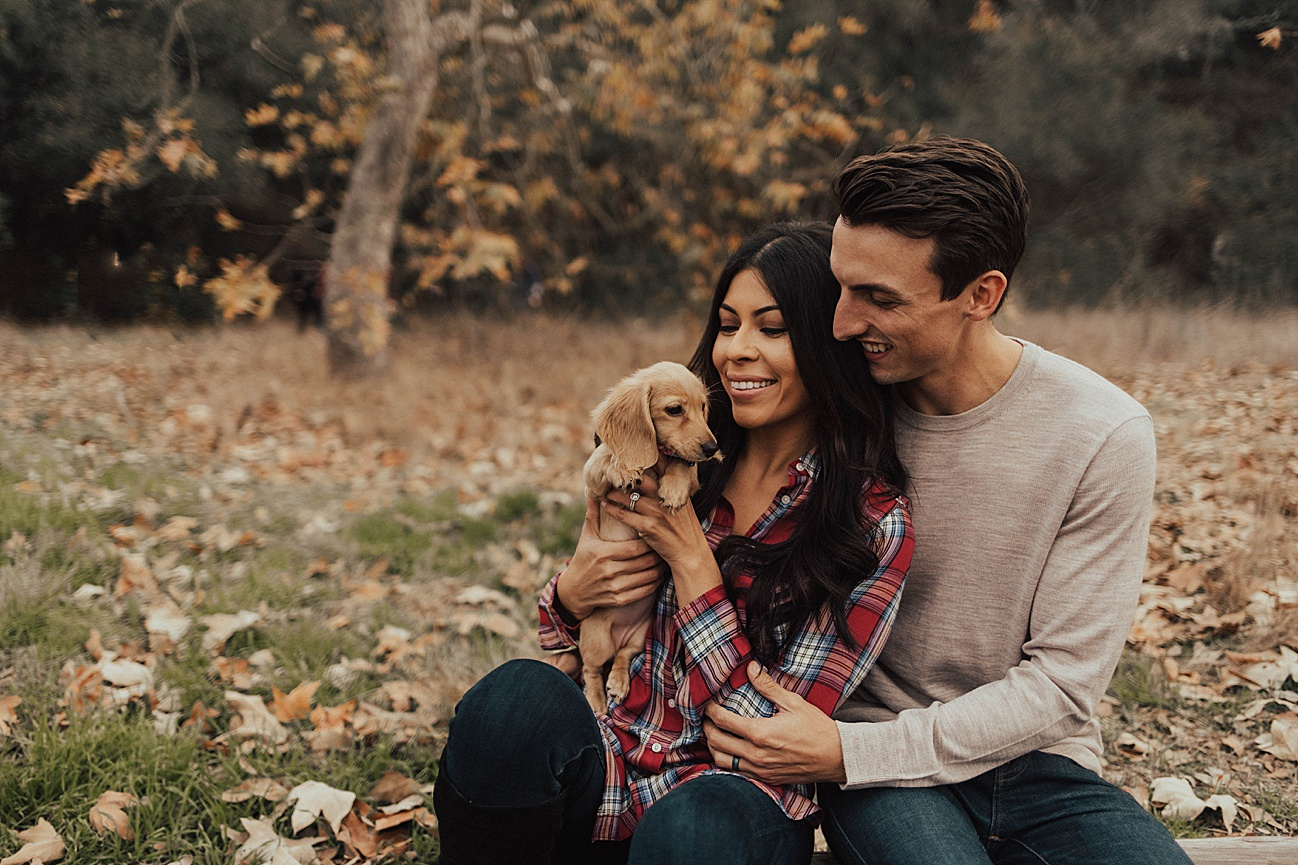 Christmas couples shoot with puppy