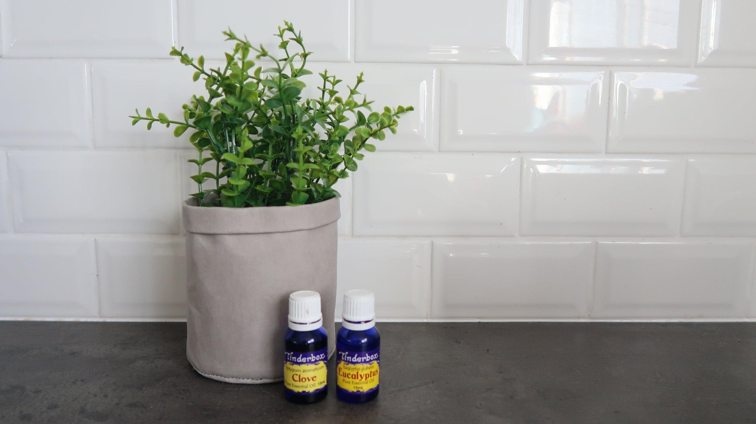 tinderbox-essential-oils.jpg