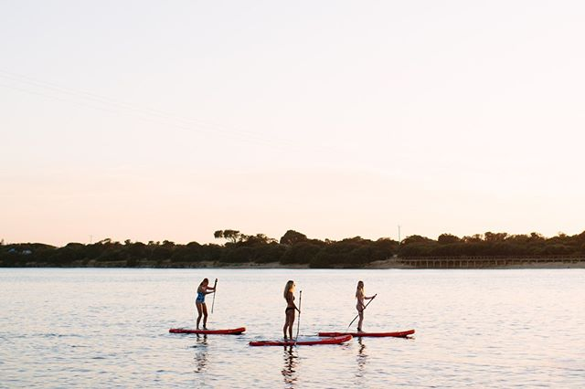 Pretending it's still summer: Yes/No? ⁣ ⁣ 📷: @edsloanephoto ⁣ ⁣ #coastingsup #standuppaddle #sup #activewomen #thisgirlcanvic #victoria #womenonthemove #changeourgame #vichealth