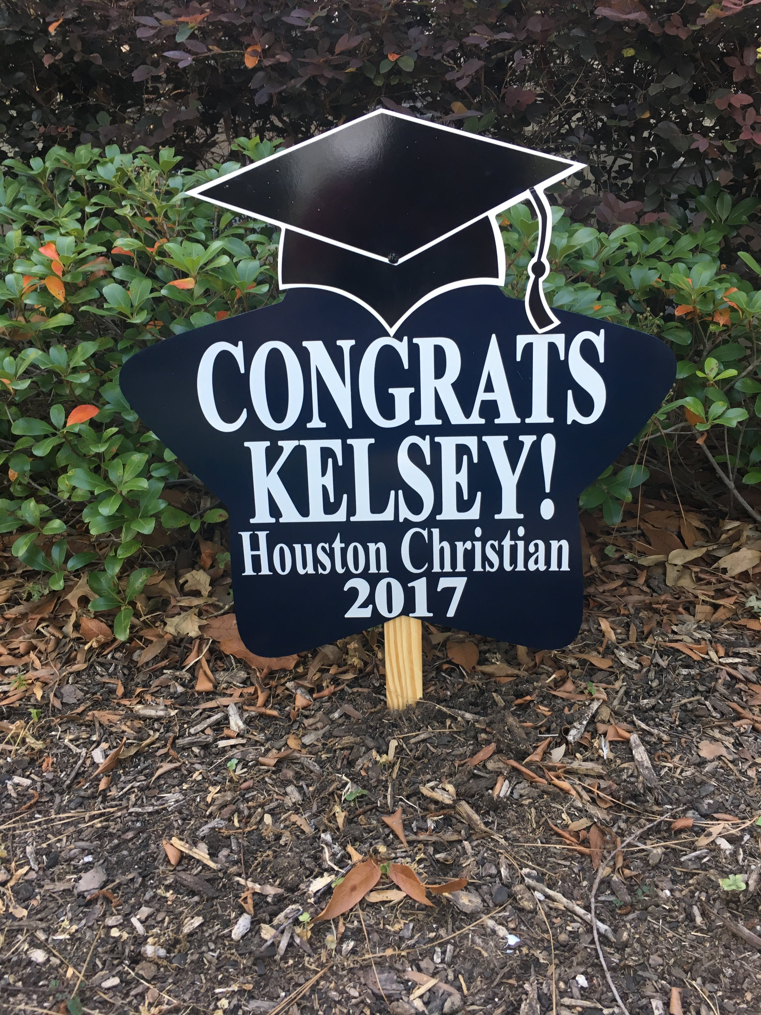 Living On A Yard Onesign Day Houston Texas One Sign Day New Baby And Birthday Sign Rentals Houston Texas Area