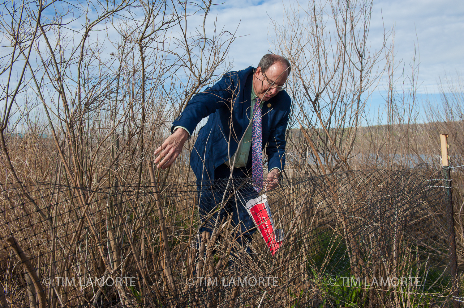 Chuck Lesnick picks up trash in the salt marsh behind the Sarah Lawrence Center for the Urban River.