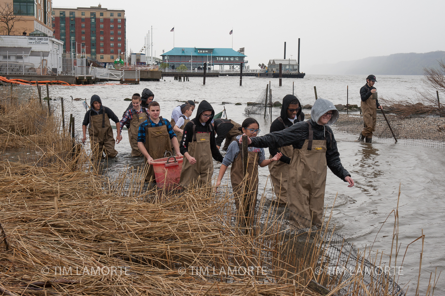 Sarah Mount leads participants through the salt marsh after collecting eels.