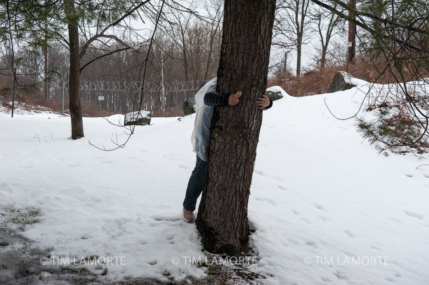 Ray St. Clair of Michigan, a friend of Jun Yasuda, hugs a tree outside Indian Point. St. Clair belongs to the Ojibwe tribe, which has a reservation in Minnesota.