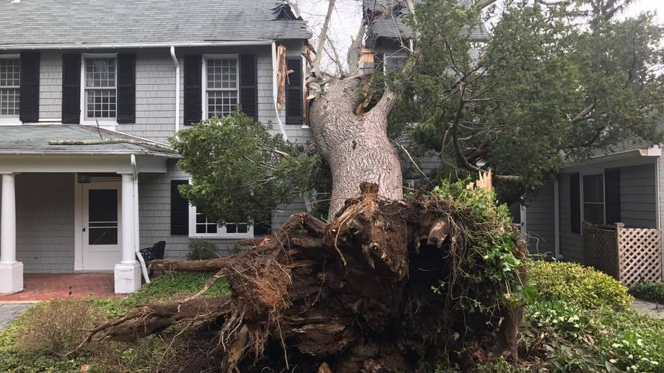 storm damage exterior residential minneapolis minnesota roof replacement siding replacement window replacement roofing components exterior damage wind damage fallen tree