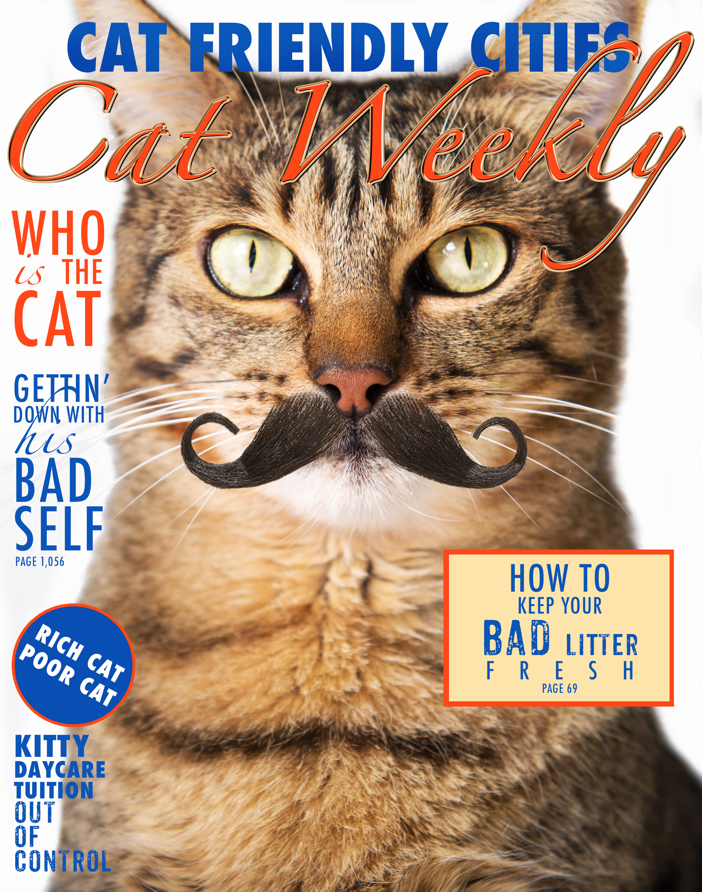 Cat Weekly Cover 1.jpg