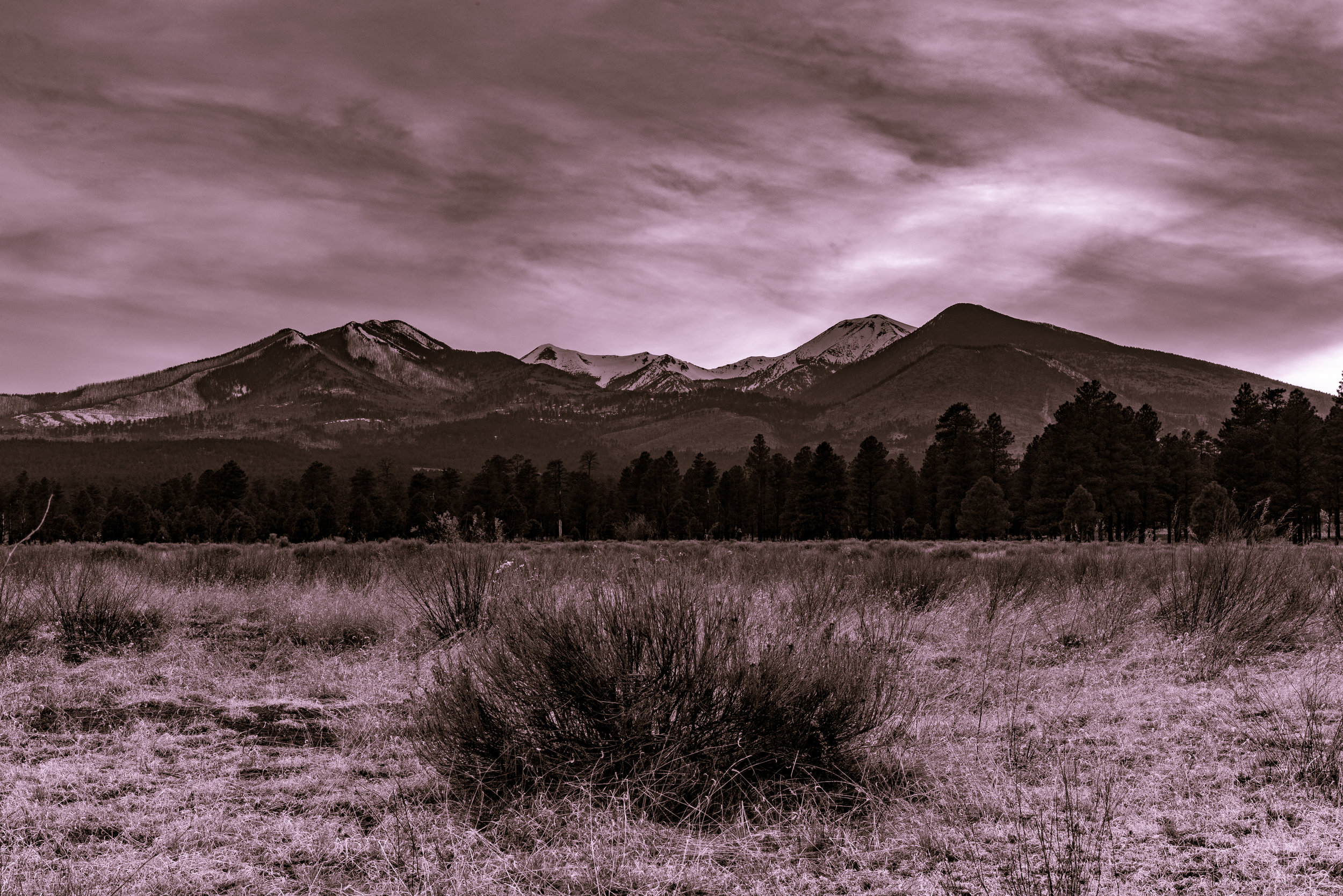 Sunset Crater Volcano Park