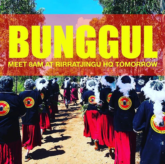 Clan members please note we have a Bunggul commitment tomorrow. Those members wishing to participate please meet at Rirratjingu Office at 8am sharp. ⏰🕗 #rirratjingu #indigenous #culture #bunggul