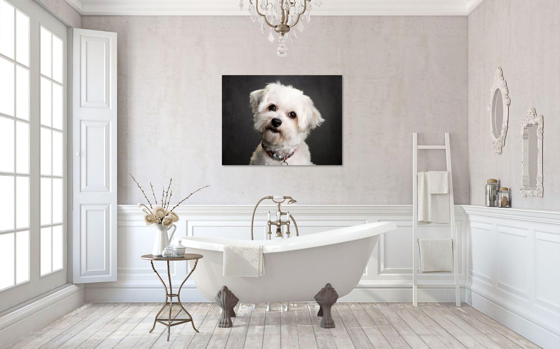 Wall_Art_Dog_Portrait_Ana.jpg