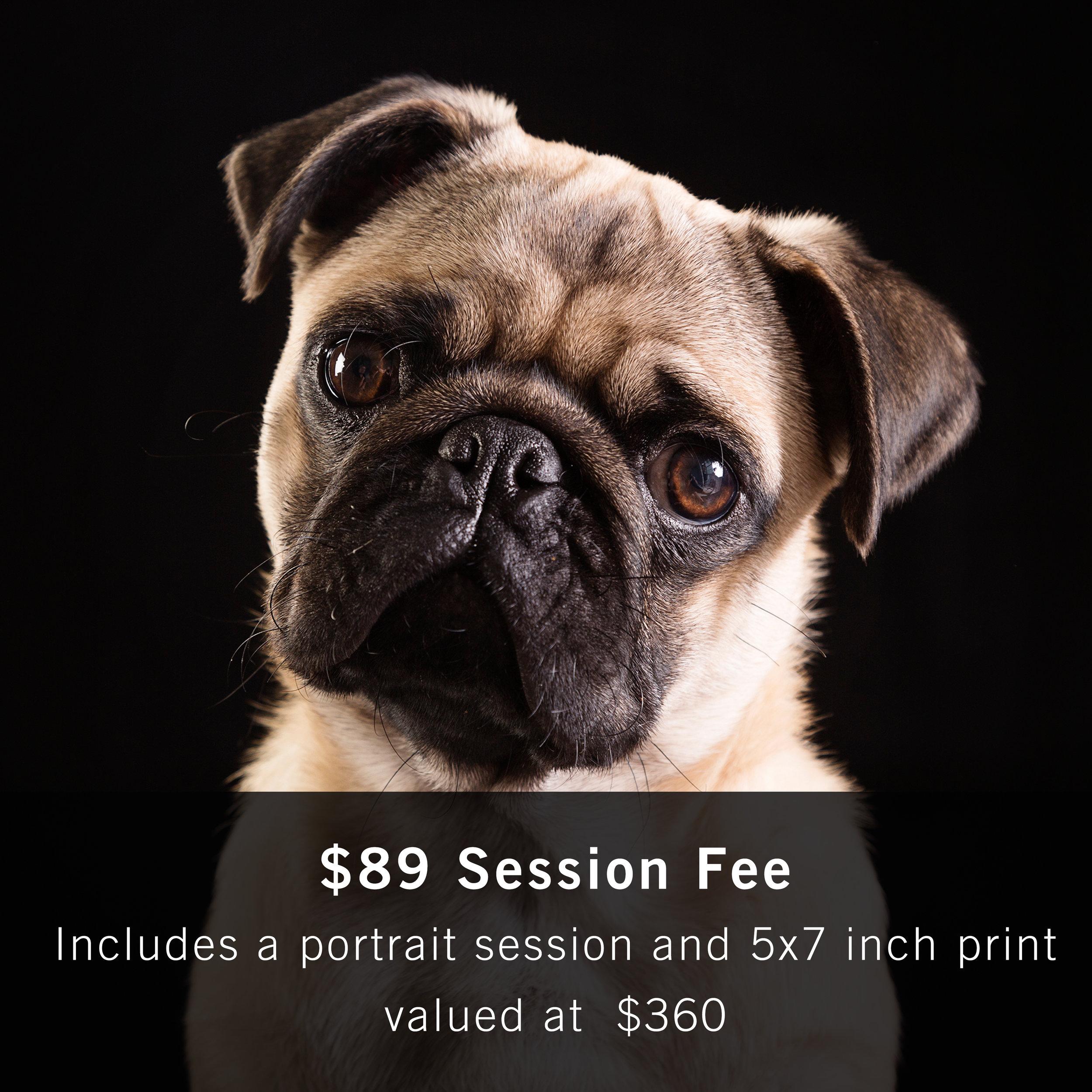 Buy Now Furever Photography $89.jpg