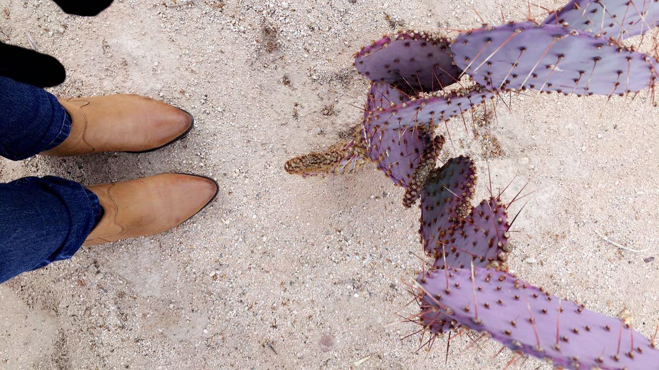 Boots because desert