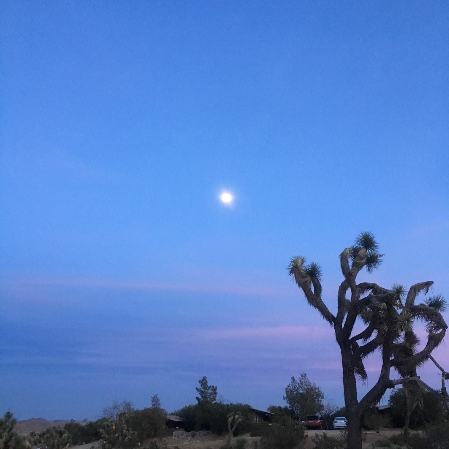 La Luna Meeting Me Outside <3