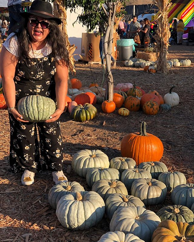 It's #spookyszn bitches 👻 🎃 . . Jumper & sunglasses 🕶: @torrid