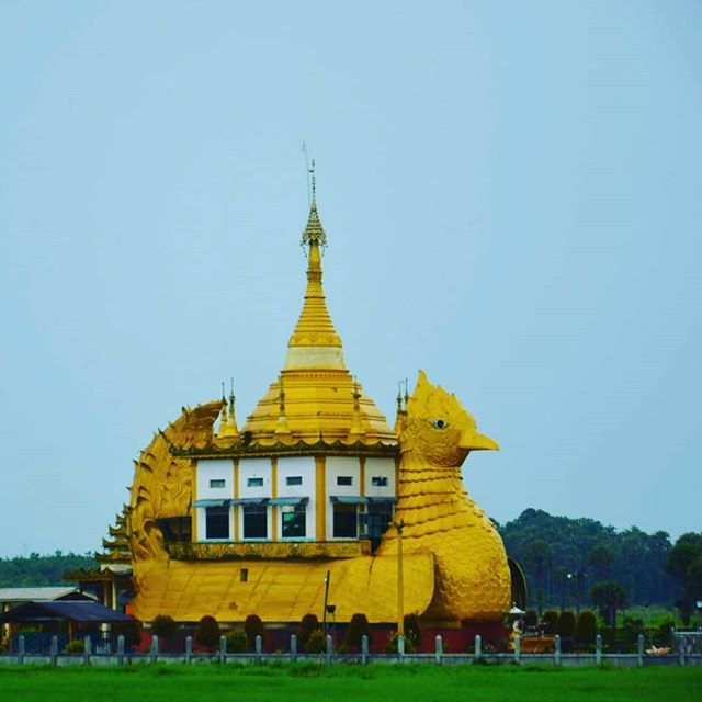 How many reasons do you need to volunteer in Myanmar? It's still an unexplored affordable country where you're guaranteed a friendly welcome. It has unique sights around every corner - such as this duck pagoda in flooded paddy fields. We're looking for people to volunteer here from 2 weeks to up to 6 months. If you'd love to explore a country from the inside, get in touch.