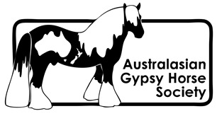 australian-gypsy-horse-society.jpg