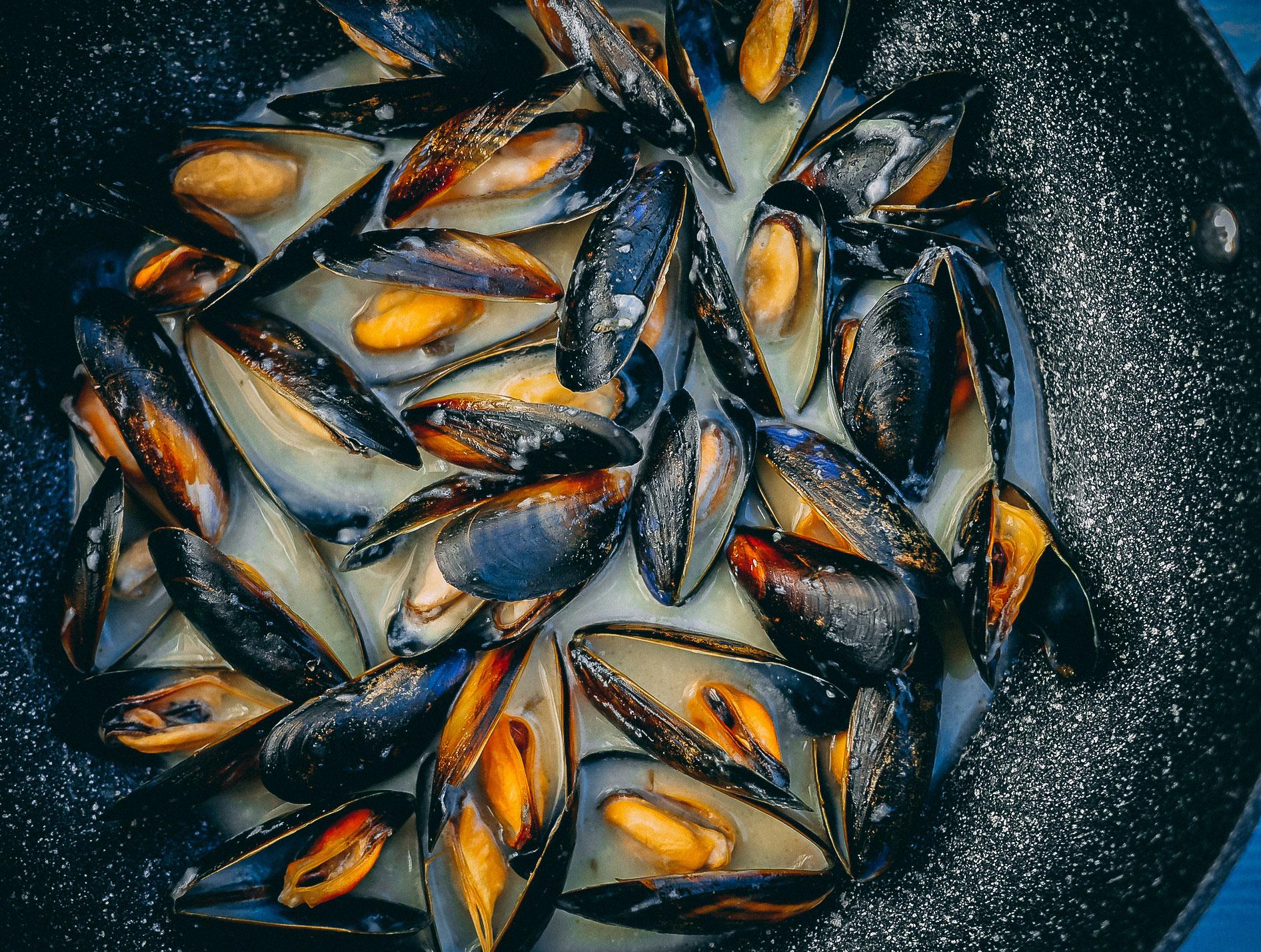 _2-mussels-web.jpg