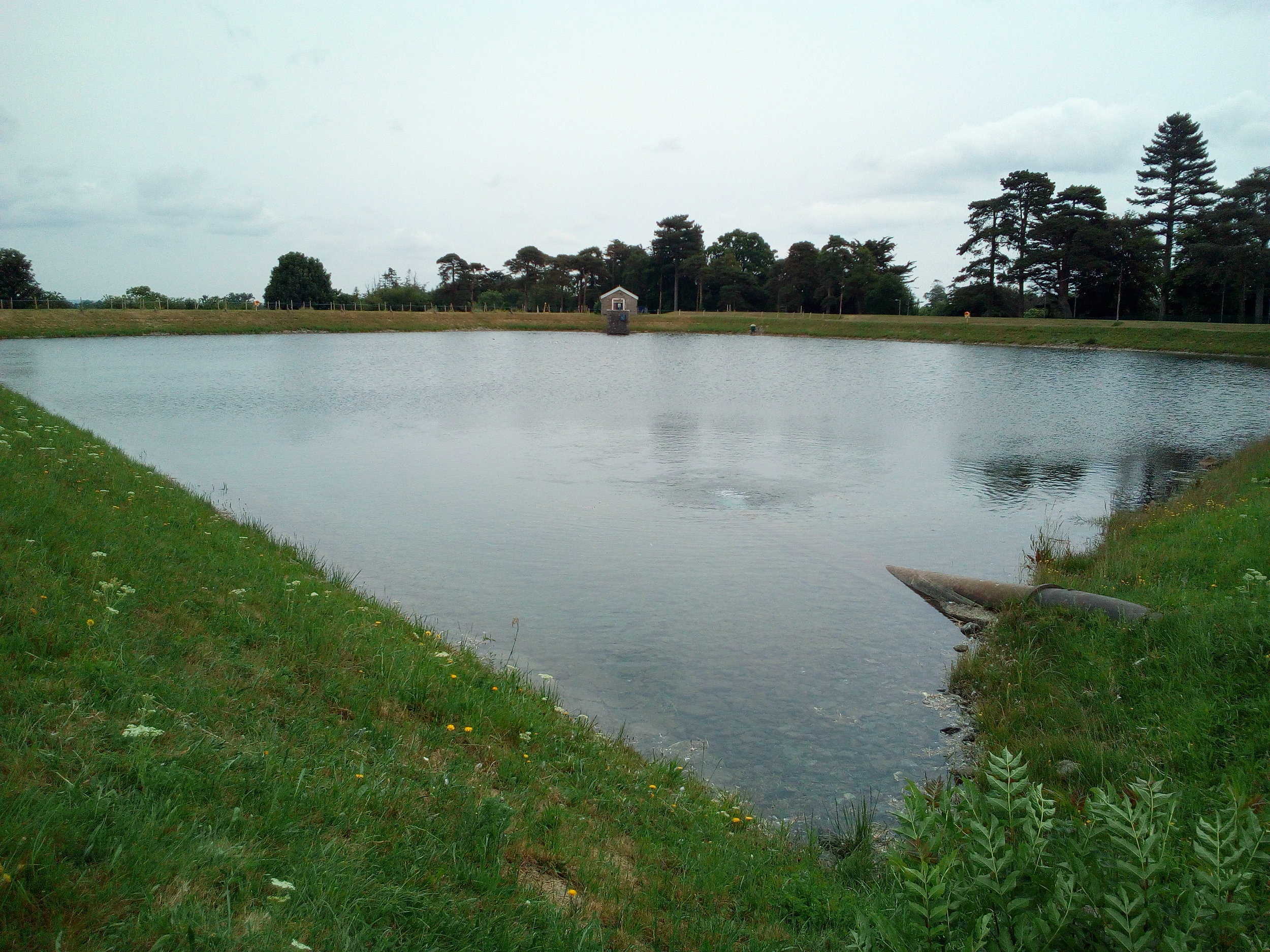 The water storage pond at Ballyboden treatment works.
