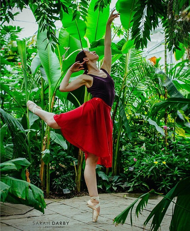 Lisa Fitzgerald amongst the tropical plants in this wonderful glasshouse. . . If you're interested in commissioning your own ballet photoshoot DMe for bookings. #thecotswoldsballerina  #sarahdarbyphotography