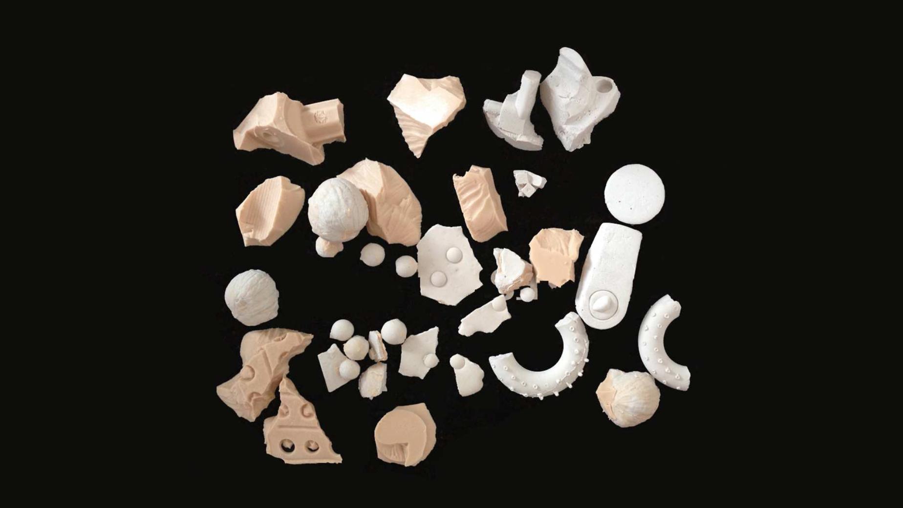 Schamboeck, M.|'Hospice Path', False Fossiles