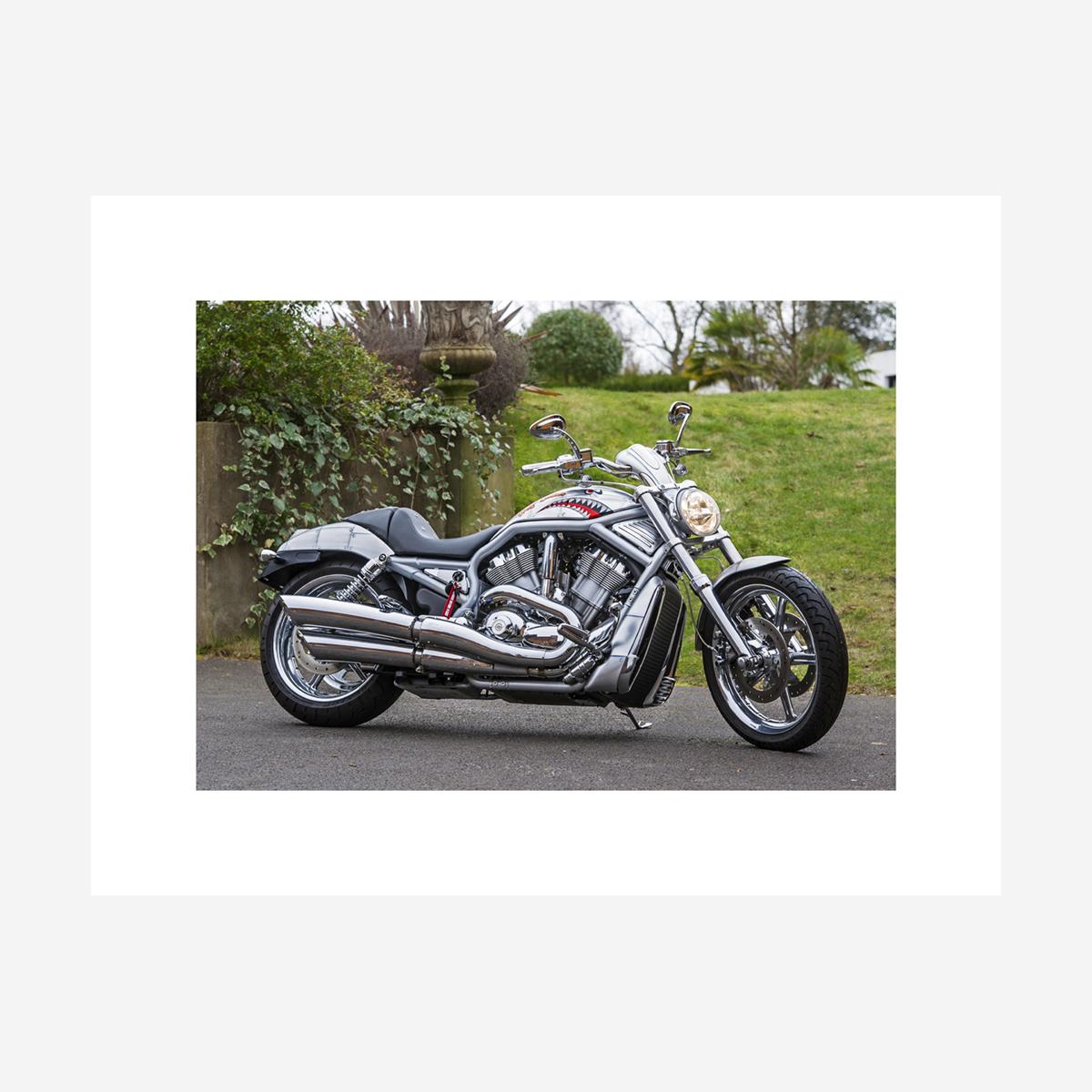 """Harley Davidson V-Rod 26"""" x 20"""""""