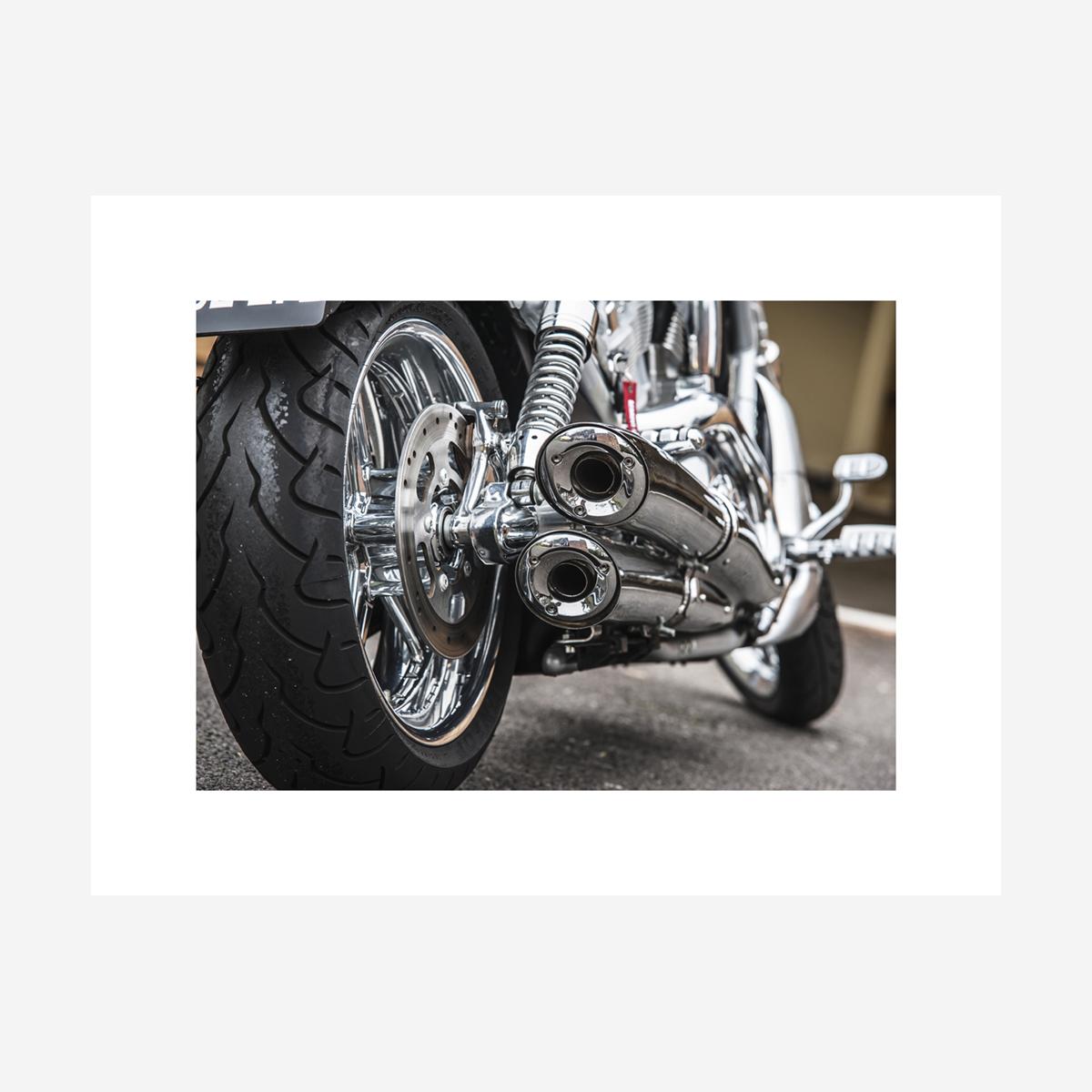 """Harley Davidson V-Rod Exhaust 26"""" x 20"""""""