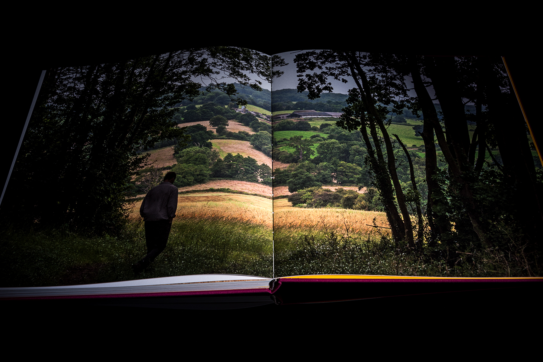 Books 23.jpg