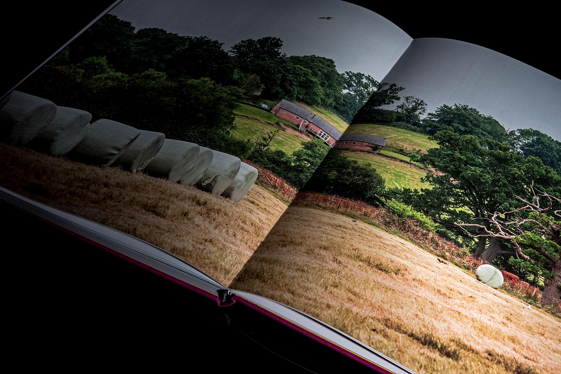 Books 26.jpg