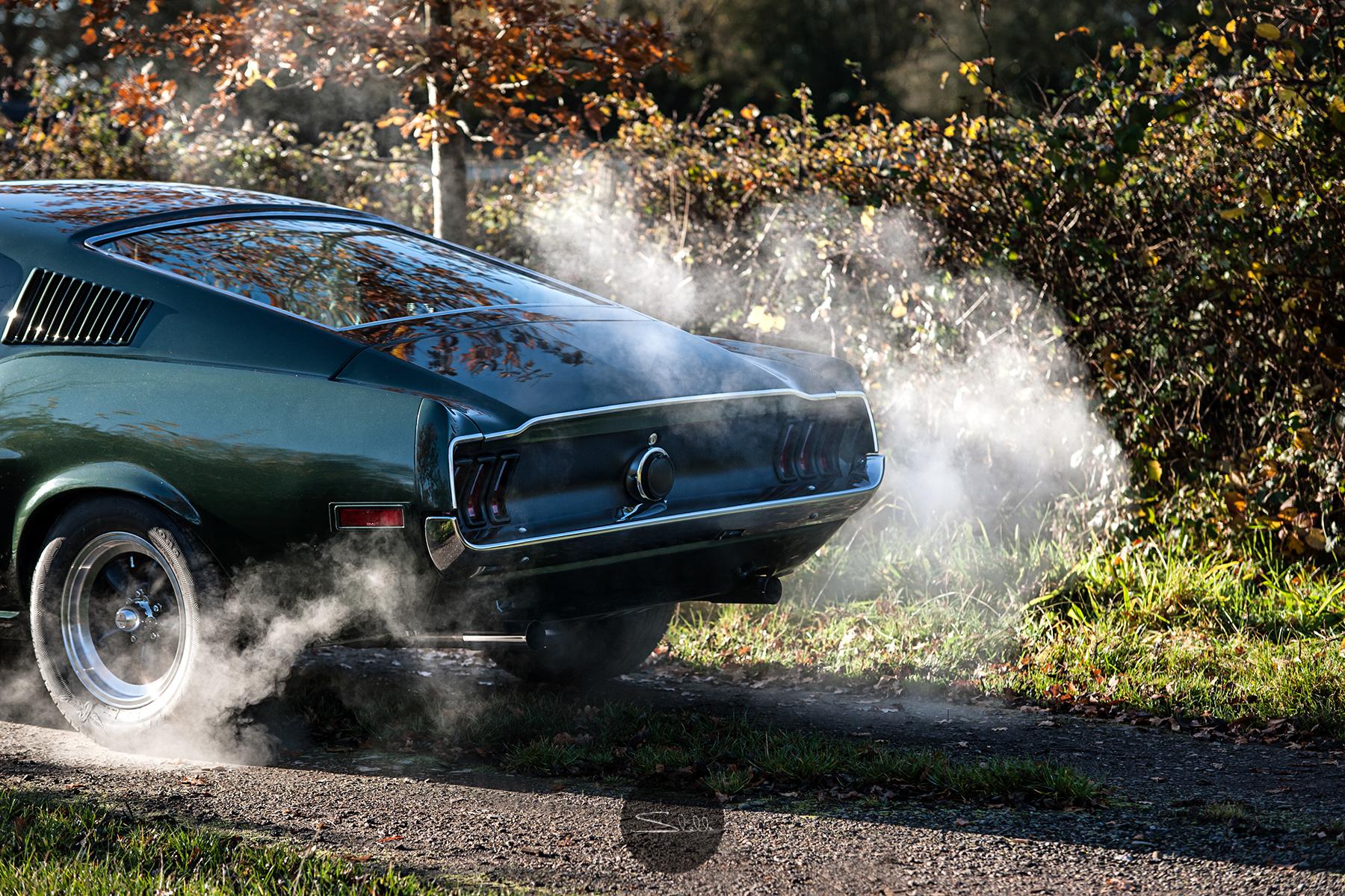 Stella Scordellis Mustang Smoke Watermarked.jpg