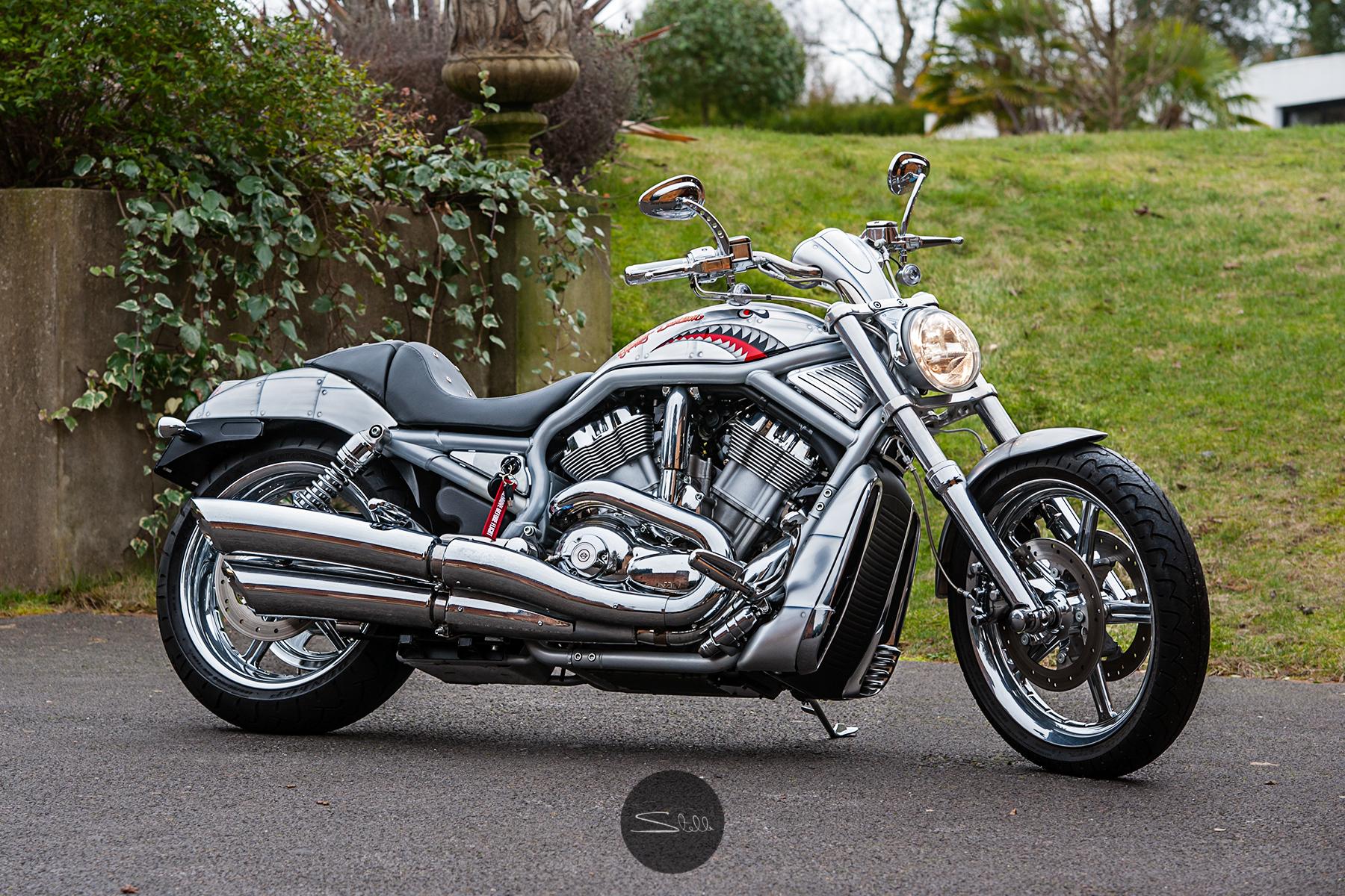 Stella Scordellis Harley Davidson V-Rod Side Watermarked.jpg