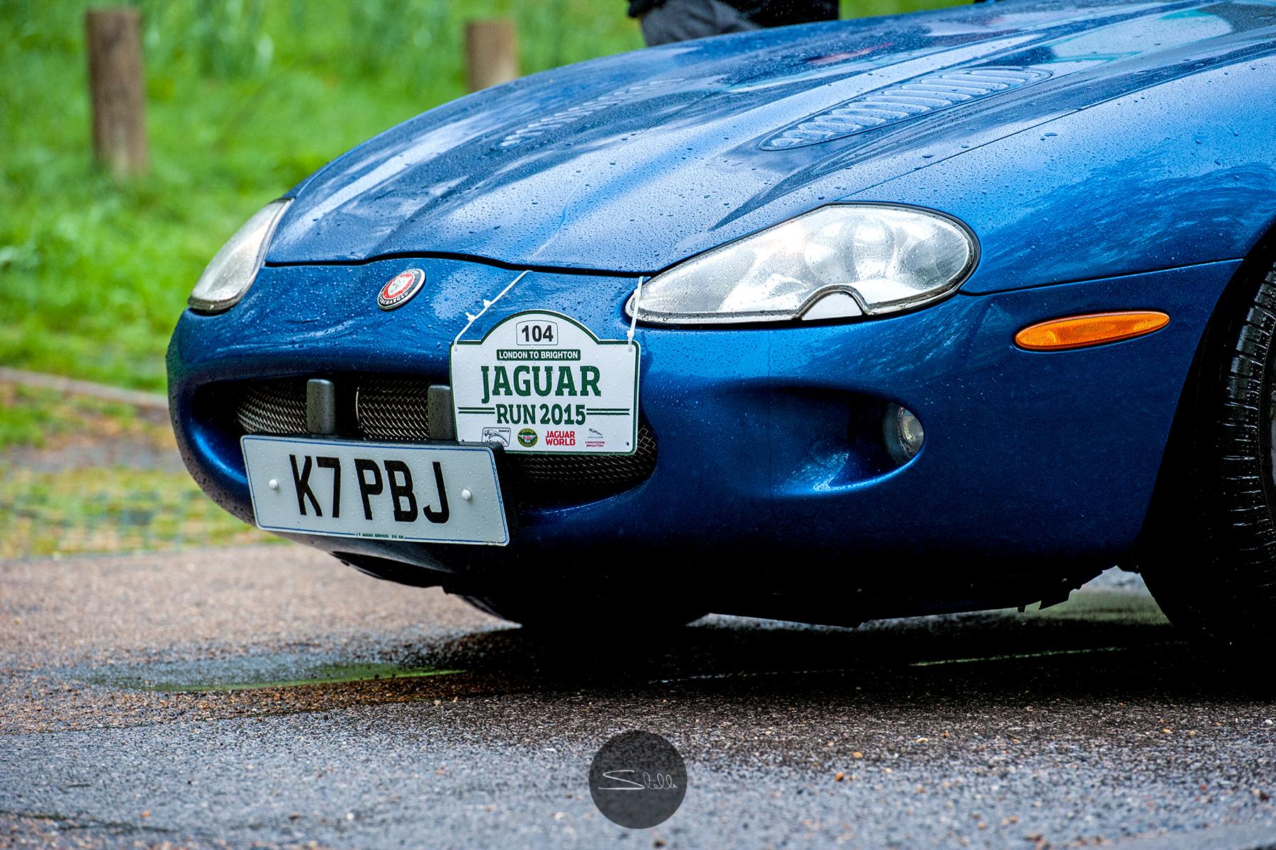 Stella Scordellis Jaguar Car Run 2015 3 Watermarked.jpg