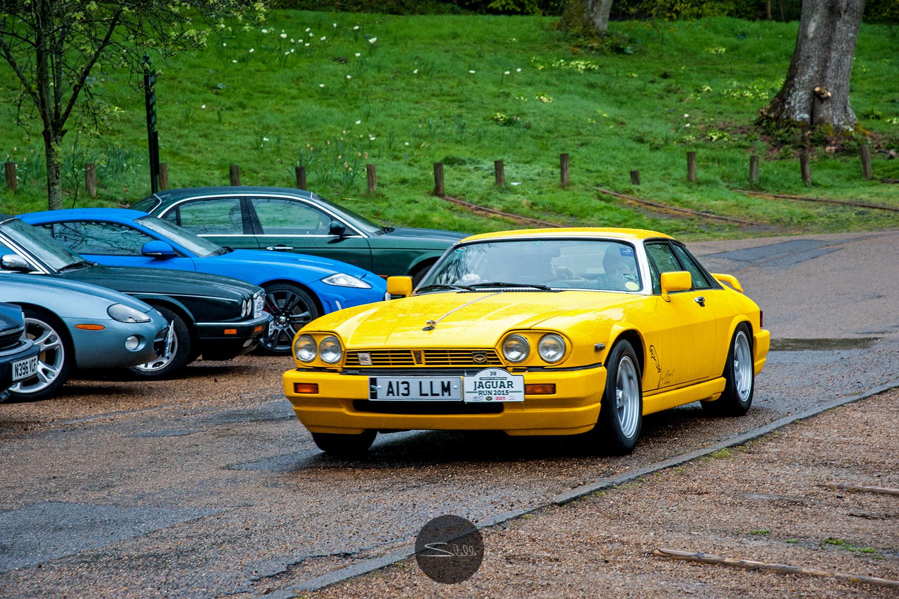 Stella Scordellis Jaguar Car Run 2015 4 Watermarked.jpg