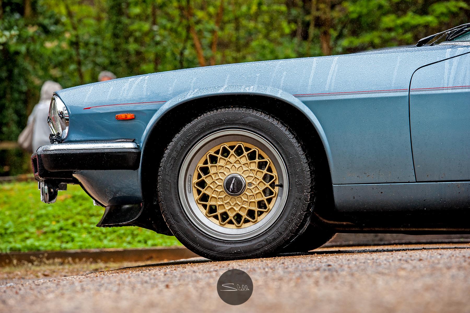 Stella Scordellis Jaguar Car Run 2015 17 Watermarked.jpg