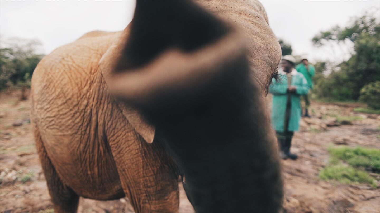 Kenya38.jpg