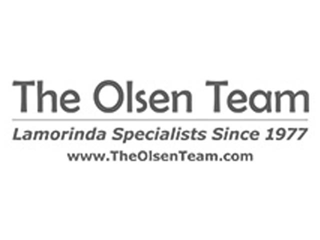 Sponsors_olsenteam_bw.png