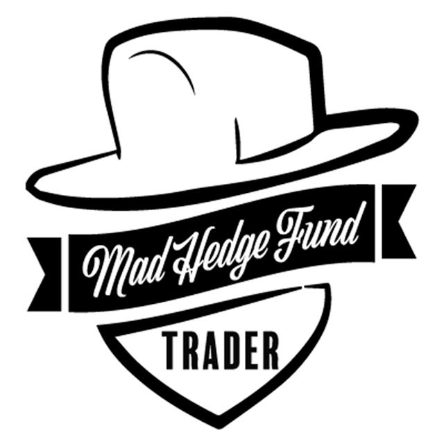Logo Mad Hedge.jpg