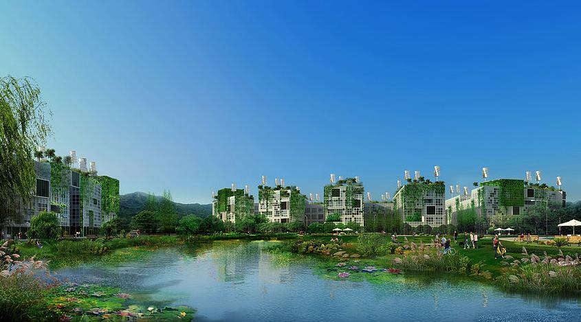 qingtan-3.png