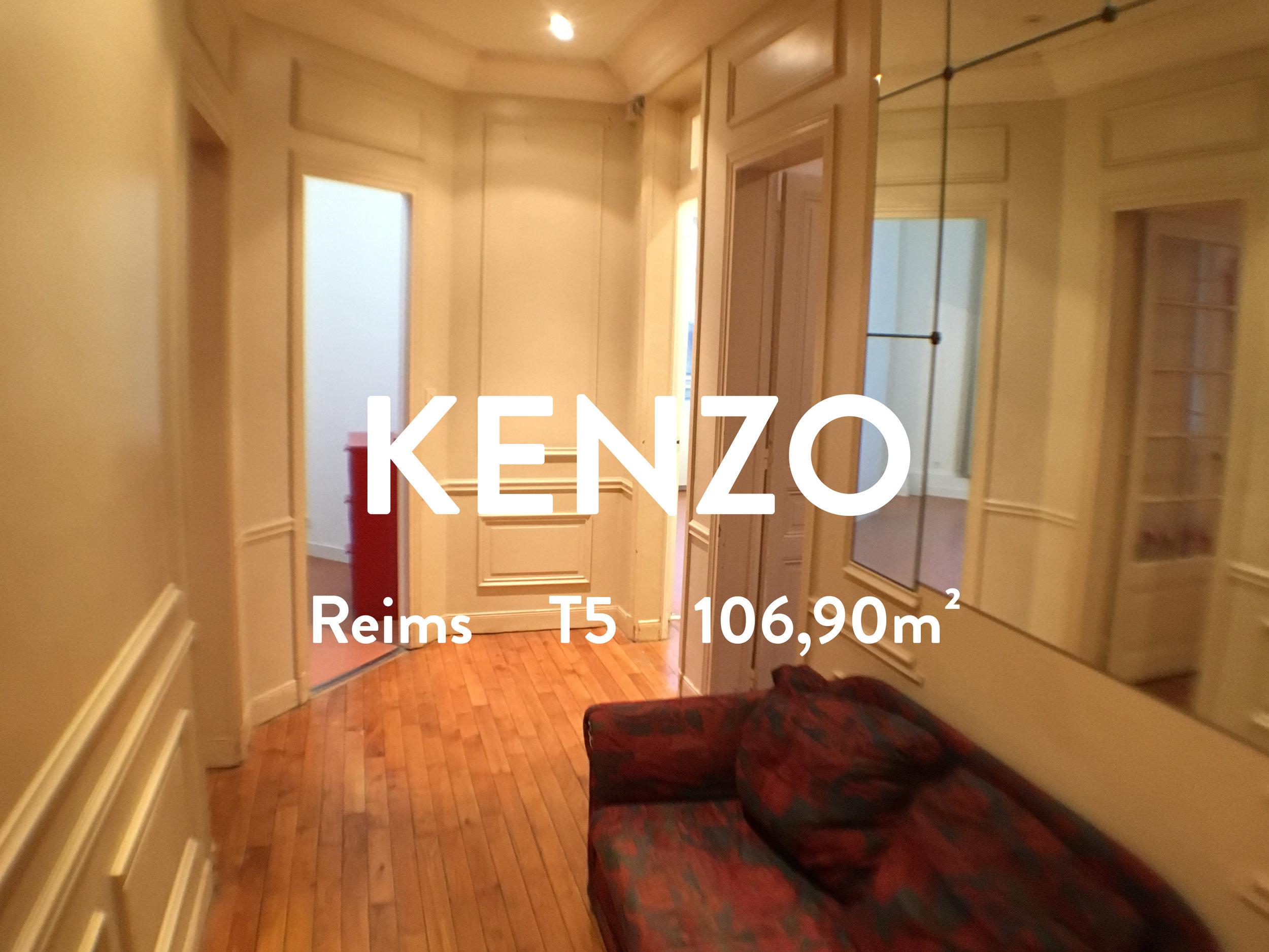 appartement centre ville reims 3 chambres location