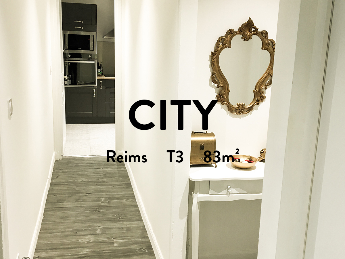 appartement hyper centre ville de reims 2 chambres