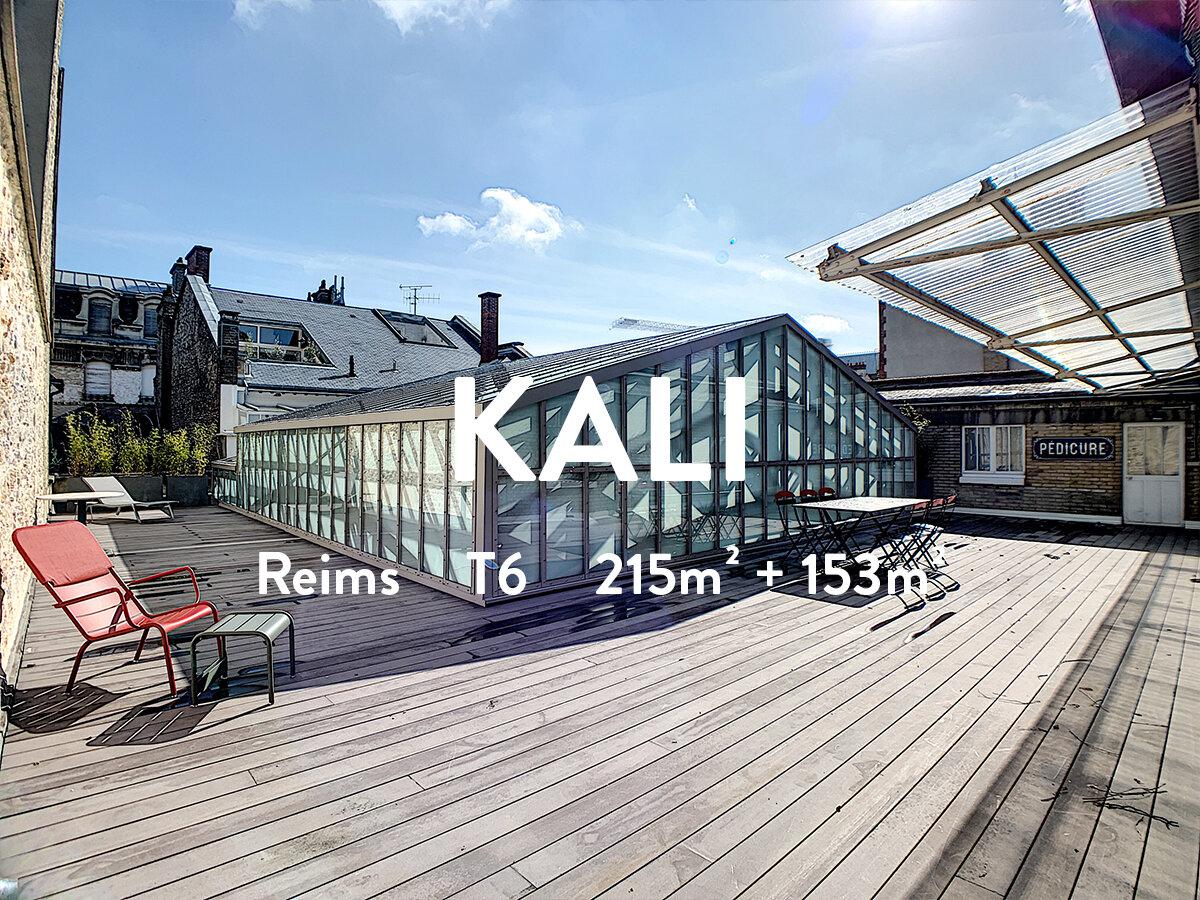 entete KALI 2.jpg