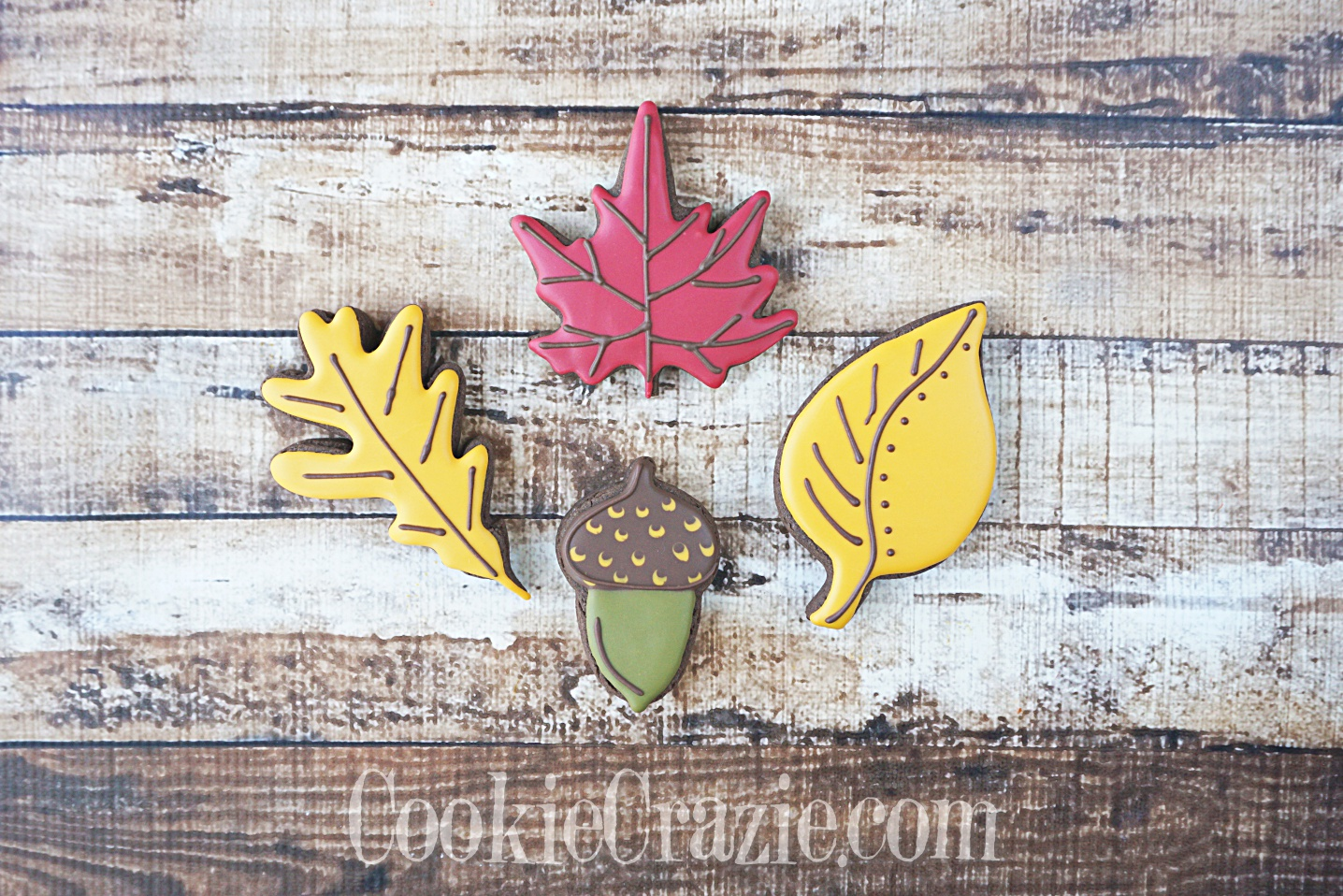 Autumn Leaf and Acorn Decorated Sugar Cookies YouTube video  HERE