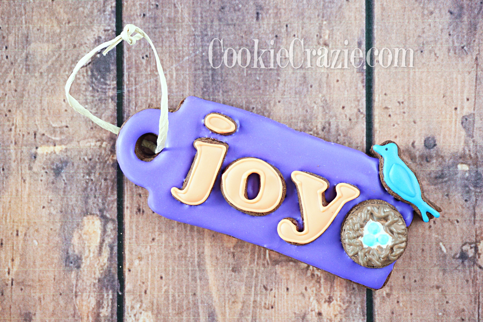 Bird Nest Gift Tag Decorated Sugar Cookie YouTube video  HERE